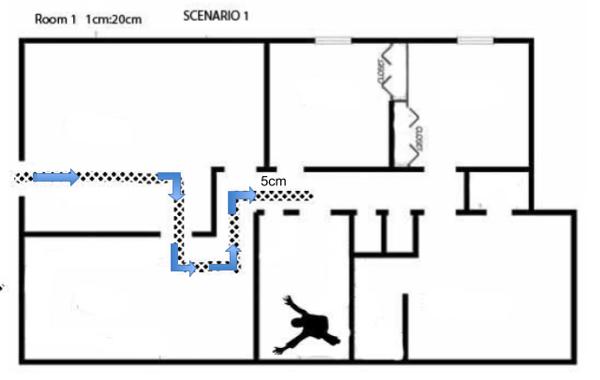 maze through room